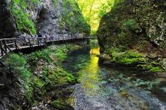 Bled gorge Stock Photos