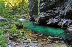 Bled gorge Royalty Free Stock Photo