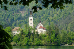Bled Island royalty free stock photo