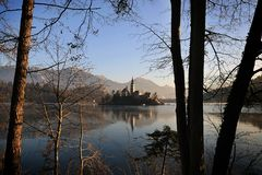 Bled Island Church among Trees Royalty Free Stock Photography