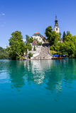 Bled island with its steep staircase. Stock Photography