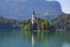 Bled island. Photo of scenic bled island with church on it Stock Images