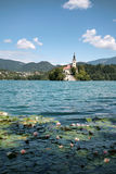 Bled island, Slovenia Royalty Free Stock Image