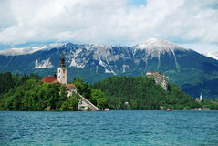 Bled with lake. Bled lake with the church on island, Slovenia, Europe Stock Images