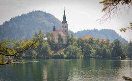 Bled Lake and Bled Island Stock Images