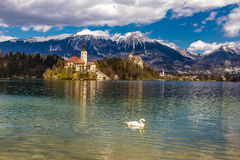 Bled Lake,Island,Church,Castle,Mountain-Slovenia. Amazing View On Bled Lake, Island,Church And Castle With Mountain Range (Stol, Vrtaca, Begunjscica) In The Stock Photography