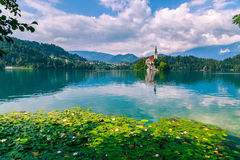Bled with lake stock image