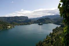 Bled lake Royalty Free Stock Photo
