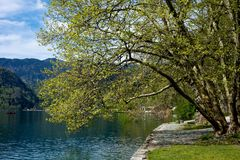 Bled lake in Slovenia Royalty Free Stock Photos