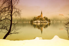 Bled with lake in winter, Slovenia, Europe Royalty Free Stock Photo