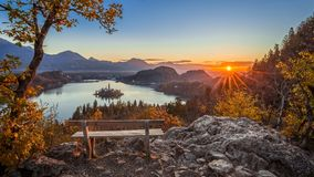Bled, Slovenia - Beautiful panormaic skyline autumn view with hilltop bench and tree and colorful sunrise of Lake Bled. And Pilgrimage Church of the Assumption royalty free stock photos
