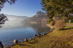 Bled, Slovenia, Europe. Bled lake of Slovenia, Europe Royalty Free Stock Photo