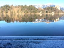 Bled, slovenia. The lake of bled in slovenia Royalty Free Stock Photo