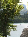 Bled - slovenia. Nice pick on the bled lake through trees and rocks Royalty Free Stock Images
