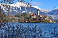 Bled, Slovenia. Scenic view of famous lake Bled in Slovenia Royalty Free Stock Photo