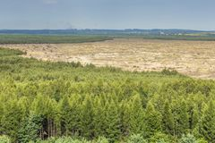 Bledow沙漠,沙子区域在Bledow和Chechlo村庄和Klucze之间的在波兰 库存照片