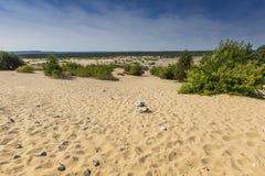 Bledow沙漠,沙子区域在Bledow和Chechlo村庄和Klucze之间的在波兰 免版税库存照片