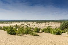 Bledow Desert, an area of sands between Bledow and the village of Chechlo and Klucze in Poland. Royalty Free Stock Photography