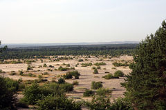 Bledowska Desert (Poland). Landscape of Bledowska Desert in Poland Royalty Free Stock Photo