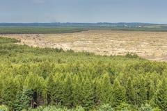 Bledowwoestijn, een gebied van zand tussen Bledow en het dorp van Chechlo en Klucze in Polen Stock Foto's