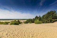 Bledowwoestijn, een gebied van zand tussen Bledow en het dorp van Chechlo en Klucze in Polen Royalty-vrije Stock Foto's