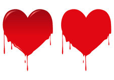 Bleeding Heart. Illustration of bleeding heart isolated on white Royalty Free Stock Photography