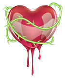 Bleeding Red Heart Stock Photo