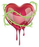Bleeding Red Heart Stock Photo