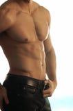 Bleekgeel mannelijk torso Royalty-vrije Stock Afbeeldingen