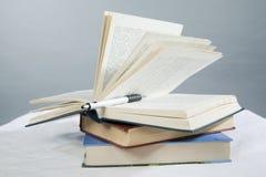 Bleistift auf einem geöffneten Buch Lizenzfreies Stockfoto