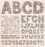 Bleistift-Skizzen-Alphabet und Zahlen Handzeichnungs-Vektorsatz Stockbilder