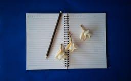 Bleistift und Blumen auf einem Notizbuch stockbilder