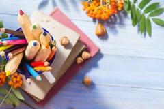 Bleistiftbuchkonzeptrückseitenschulherbstfrucht Lizenzfreie Stockfotografie