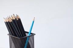 Bleistifte in einem Bleistiftkasten auf lokalisiert Lizenzfreie Stockbilder