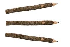 Bleistifte für von einem Baumzweig separat zeichnen Lizenzfreie Stockbilder