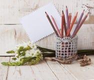 Bleistifte im Glas und in den Blumen, selektiver Fokus Lizenzfreie Stockbilder