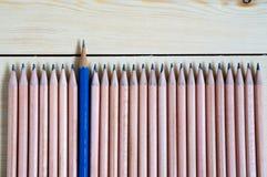 Bleistifte lokalisiert auf Holz Stockbilder