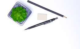 Bleistifte, Notizbuch und Kaktus liegen auf dem Desktop Lizenzfreies Stockbild