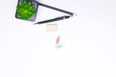 Bleistifte, Notizbuch und Kaktus liegen auf dem Desktop Stockfotografie