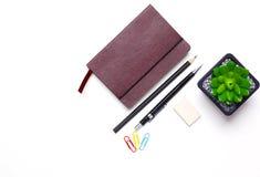 Bleistifte, Notizbuch und Kaktus liegen auf dem Desktop Lizenzfreie Stockfotos