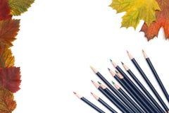Bleistifte und Herbstblätter Stockfotos