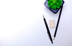 Bleistifte und Kaktuslüge auf dem Desktop Stockbild