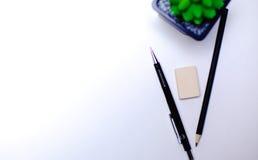 Bleistifte und Kaktuslüge auf dem Desktop Stockfoto