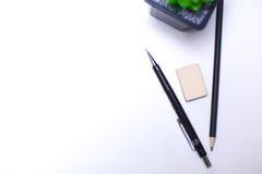Bleistifte und Kaktuslüge auf dem Desktop Lizenzfreie Stockbilder