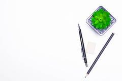 Bleistifte und Kaktuslüge auf dem Desktop Lizenzfreie Stockfotos