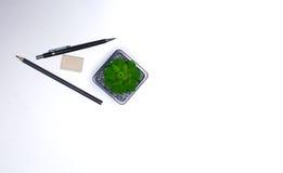 Bleistifte und Kaktuslüge auf dem Desktop Stockfotografie