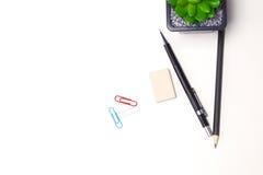Bleistifte und Kaktuslüge auf dem Desktop Lizenzfreies Stockbild