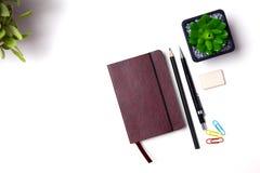 Bleistifte und Kaktuslüge auf dem Desktop Stockfotos