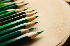 Bleistifte von grünen Schatten Stockfoto