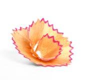 Bleistiftschnitzelblume Stockfotos